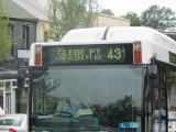431 Bus to Glebe Point