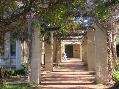 Glebe Library